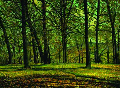 vienna-woods-thumbnail